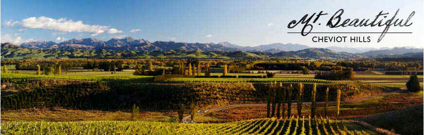 Mt Beautiful Vineyard and Tasting Room